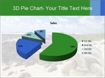 Rocks And Turtle PowerPoint Template - Slide 35