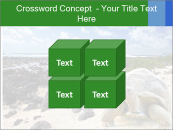 Rocks And Turtle PowerPoint Template - Slide 39