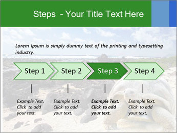 Rocks And Turtle PowerPoint Template - Slide 4