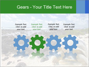Rocks And Turtle PowerPoint Template - Slide 48