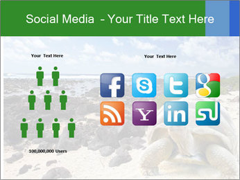 Rocks And Turtle PowerPoint Template - Slide 5