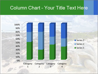 Rocks And Turtle PowerPoint Template - Slide 50