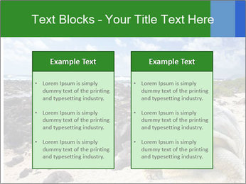 Rocks And Turtle PowerPoint Template - Slide 57
