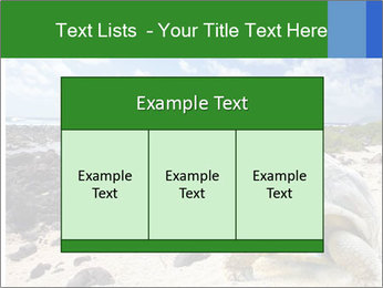 Rocks And Turtle PowerPoint Template - Slide 59