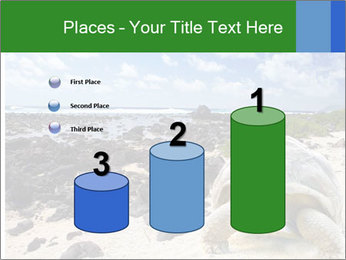 Rocks And Turtle PowerPoint Template - Slide 65