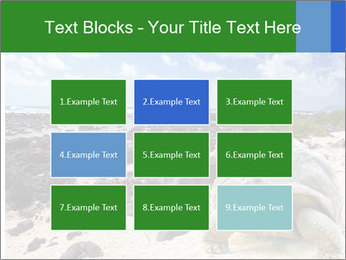 Rocks And Turtle PowerPoint Template - Slide 68