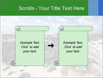Rocks And Turtle PowerPoint Template - Slide 74