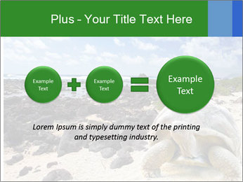 Rocks And Turtle PowerPoint Template - Slide 75