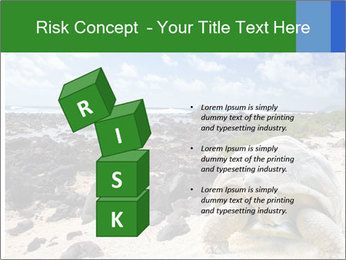 Rocks And Turtle PowerPoint Template - Slide 81