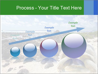 Rocks And Turtle PowerPoint Template - Slide 87