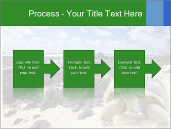 Rocks And Turtle PowerPoint Template - Slide 88