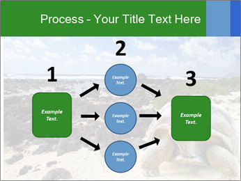 Rocks And Turtle PowerPoint Template - Slide 92