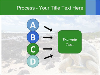 Rocks And Turtle PowerPoint Template - Slide 94
