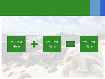 Rocks And Turtle PowerPoint Template - Slide 95