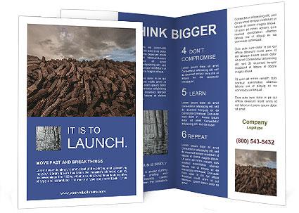 0000088997 Brochure Template