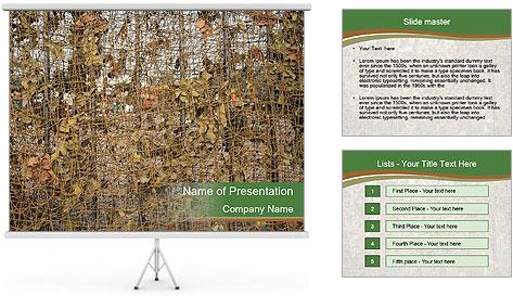 Шаблоны лес powerpoint к презентациям