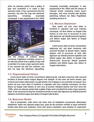0000089010 Word Template - Page 4