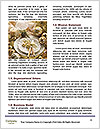0000089012 Word Template - Page 4
