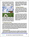 0000089021 Word Templates - Page 4