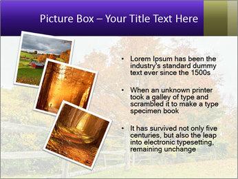 Orange Tree Leaves PowerPoint Template - Slide 17