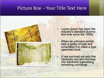 Orange Tree Leaves PowerPoint Template - Slide 20