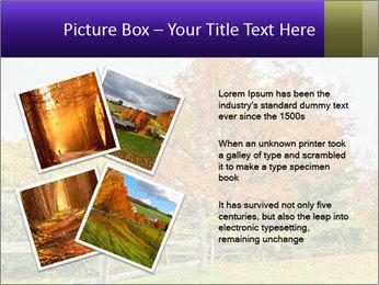Orange Tree Leaves PowerPoint Template - Slide 23