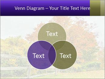 Orange Tree Leaves PowerPoint Template - Slide 33