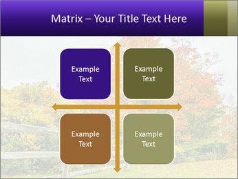 Orange Tree Leaves PowerPoint Template - Slide 37