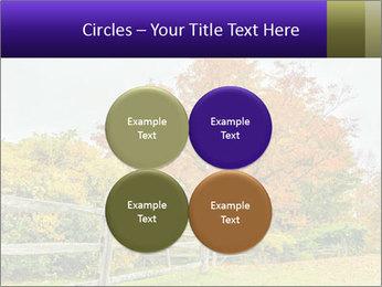 Orange Tree Leaves PowerPoint Template - Slide 38