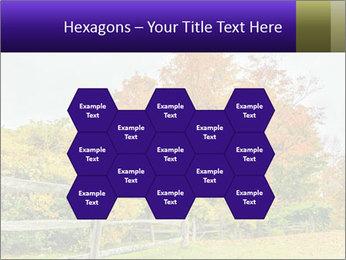 Orange Tree Leaves PowerPoint Template - Slide 44