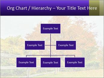Orange Tree Leaves PowerPoint Template - Slide 66