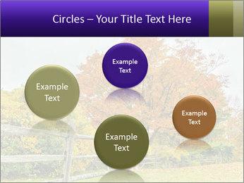 Orange Tree Leaves PowerPoint Template - Slide 77