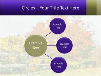 Orange Tree Leaves PowerPoint Template - Slide 79