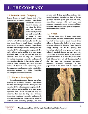 0000089035 Word Template - Page 3