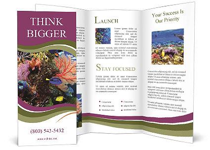0000089037 Brochure Template
