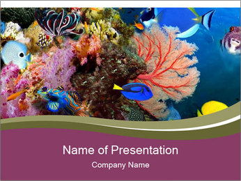 Colorful Corals PowerPoint Template - Slide 1