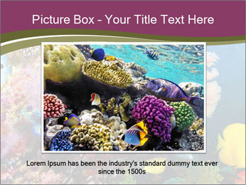 Colorful Corals PowerPoint Template - Slide 16
