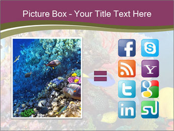 Colorful Corals PowerPoint Template - Slide 21