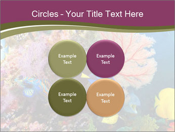 Colorful Corals PowerPoint Template - Slide 38