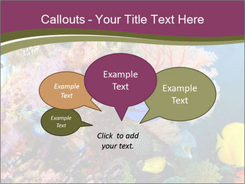 Colorful Corals PowerPoint Template - Slide 73