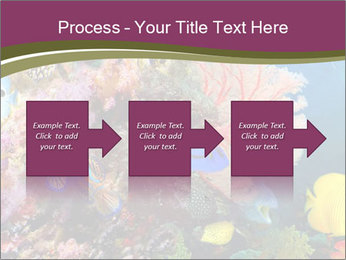 Colorful Corals PowerPoint Template - Slide 88
