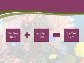 Colorful Corals PowerPoint Template - Slide 95