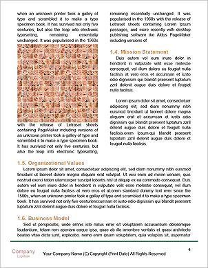 0000089040 Word Template - Page 4
