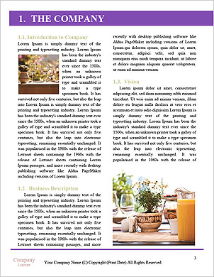 0000089049 Word Template - Page 3