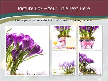 Flowerd In Medow PowerPoint Template - Slide 19