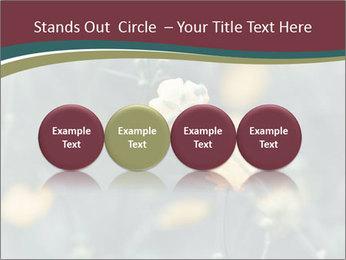Flowerd In Medow PowerPoint Template - Slide 76