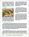 0000089069 Word Templates - Page 4