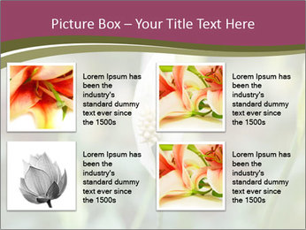 White Lily PowerPoint Template - Slide 14