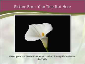 White Lily PowerPoint Template - Slide 15