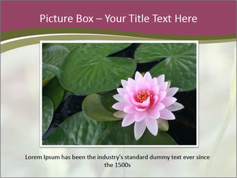 White Lily PowerPoint Template - Slide 16